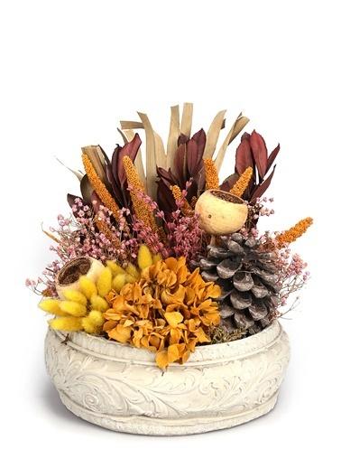 Kibrithane Çiçek Yapay Çiçek  Dekoratif Beton Saksı Doğal Kuru Aranjman Kc00200846 Renkli